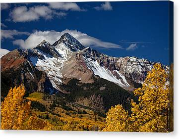 Golden Afternoon Canvas Print by Darren  White