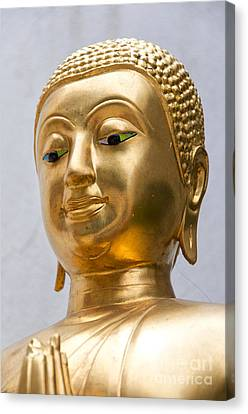 Golden Buddha Statue Canvas Print by Antony McAulay