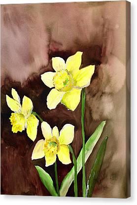 Golden Daffodils Canvas Print by Neela Pushparaj