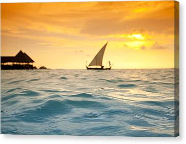 Golden Dhoni Sunset Canvas Print by Sean Davey