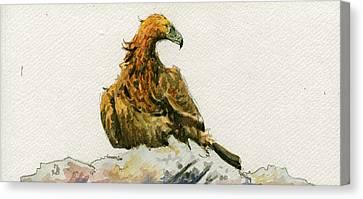 Golden Eagle Aquila Chrysaetos Canvas Print by Juan  Bosco