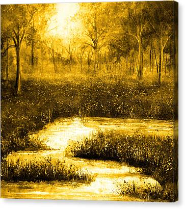 Golden Evening Canvas Print by Ann Marie Bone
