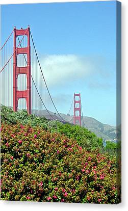 Golden Gate Canvas Print by Suzanne Gaff