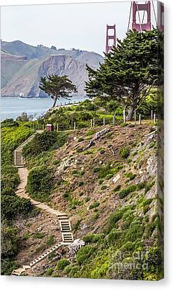 Golden Gate Trail Canvas Print by Kate Brown