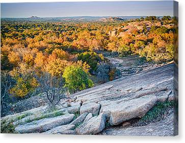 Golden Hour Light Enchanted Rock Texas Hill Country Canvas Print by Silvio Ligutti