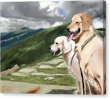 Golden Lab Canvas Print by Eric Smith