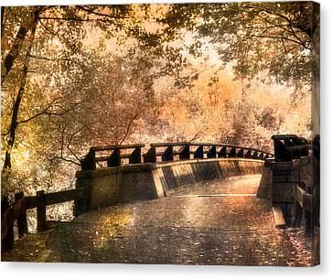 Golden Pathway - Mine Falls Park Canvas Print by Joann Vitali