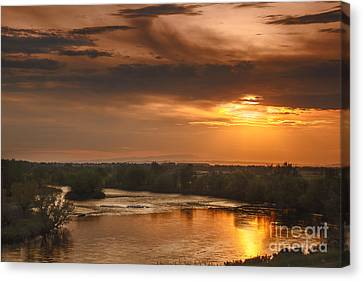 Golden Payette River Canvas Print by Robert Bales