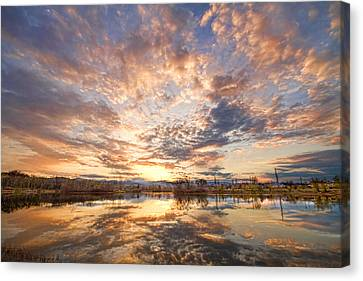 Golden Ponds Scenic Sunset Reflections 3 Canvas Print by James BO  Insogna