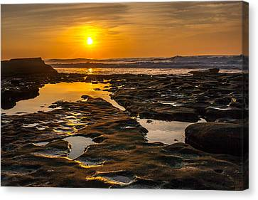 Golden Pools Canvas Print by Peter Tellone