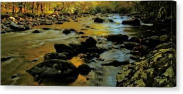 Golden View Of The Little River In Autumn Canvas Print by Dan Sproul