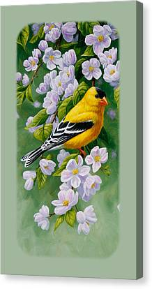 Goldfinch Iphone Case V2 Canvas Print by Crista Forest