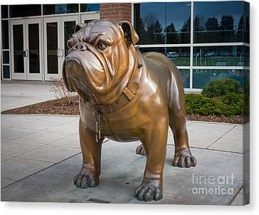 Gonzaga Bulldog Canvas Print by Inge Johnsson