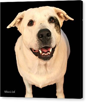 Good Dog Canvas Print by Bellesouth Studio