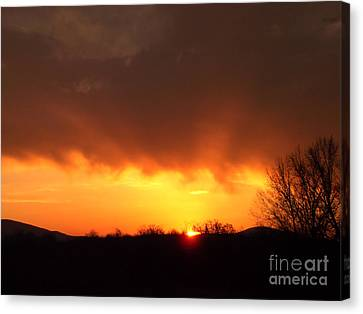 Good Morning Canvas Print by R McLellan
