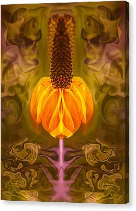 Good Vibrations Canvas Print by Omaste Witkowski