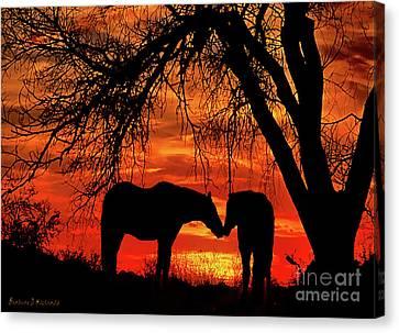 Goodnight Kiss Canvas Print by Barbara D Richards