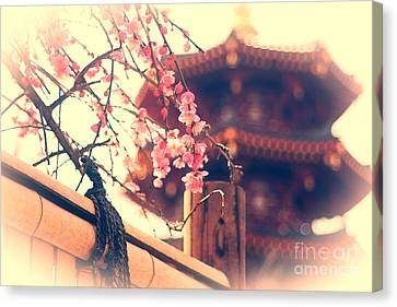 Gorgeous Pagoda And Plum Blossoms With Bamboo Fence Canvas Print by Beverly Claire Kaiya