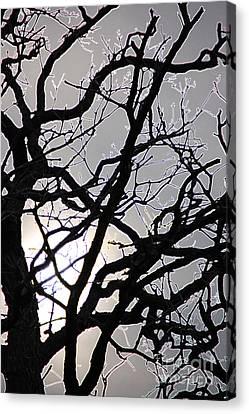 Goth Tree Canvas Print by First Star Art