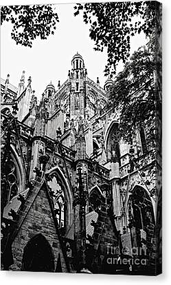 Gothic Cathedral Of Den Bosch Canvas Print by Carol Groenen