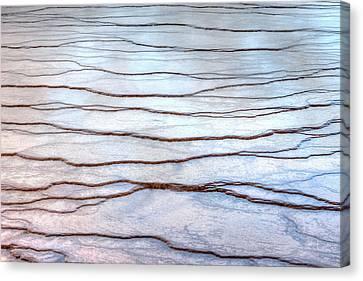 Gradations Canvas Print by David Andersen