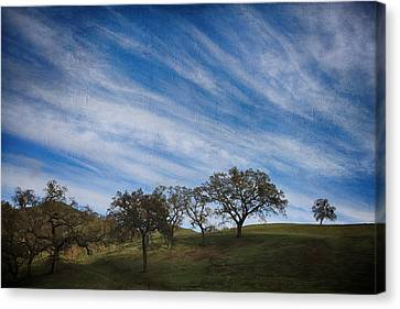 Gradually Canvas Print by Laurie Search