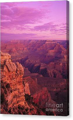 Grand Canyon Canvas Print by George Ranalli