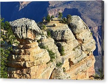Grand Canyon National Park Cap Rock Formation Closeup Canvas Print by Shawn O'Brien