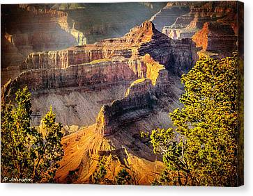 Grand Canyon National Park Canvas Print by Bob and Nadine Johnston