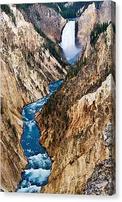 Grand Canyon Of Yellowstone Canvas Print by Bill Gallagher