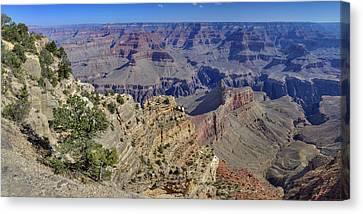 Grand Canyon South Rim Canvas Print by Patrick Jacquet