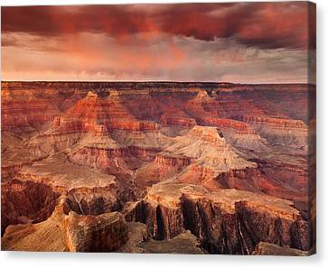 Grand Canyon Sunset Canvas Print by Rory Wallwork