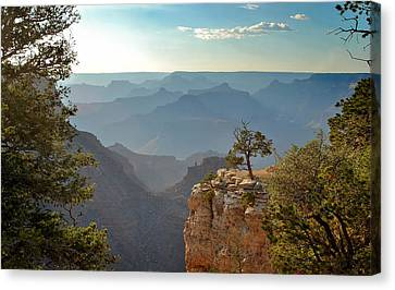 Grand Canyon's Setting Sun Canvas Print by Gregory Ballos