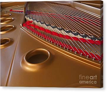 Grand Piano Canvas Print by Ann Horn