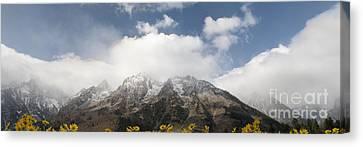 Grand Teton National Park Canvas Print by Wildlife Fine Art