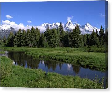 Grand Teton Reflection Canvas Print by Brian Harig