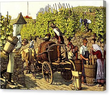 Grape Harvest 1890 Canvas Print by Padre Art