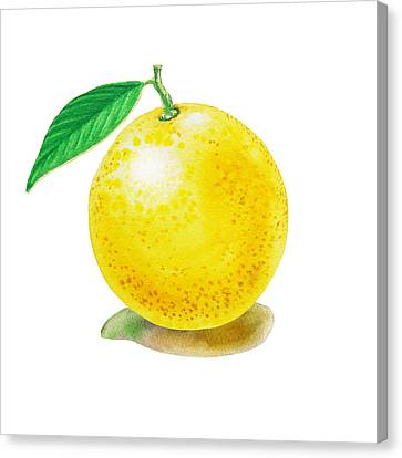 Grapefruit Canvas Print by Irina Sztukowski