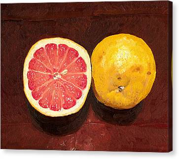 Grapefruits Oil Painting Canvas Print by
