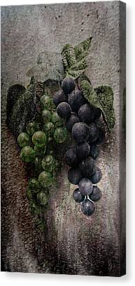 Off The Vine Canvas Print by Aaron Berg