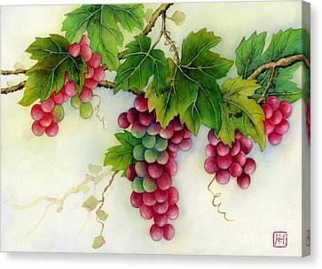 Grapes Canvas Print by Hailey E Herrera