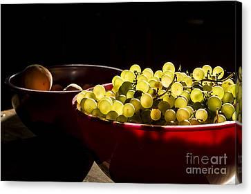 Grapes Canvas Print by Tony Priestley