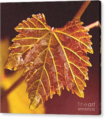 Grapevine In Fall Canvas Print by Artist and Photographer Laura Wrede