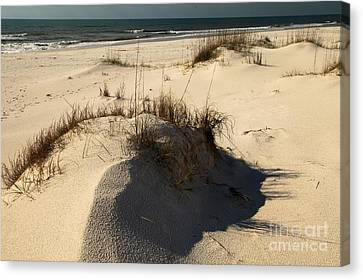 Grassy Dunes Canvas Print by Adam Jewell