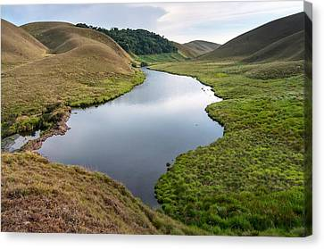 Grassy Hills And Lake Canvas Print by K Jayaram