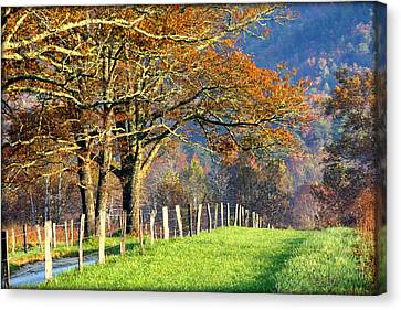 Grateful Drive In Fall Canvas Print by Susie Weaver