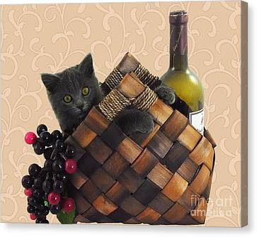Gray Kitten Wine Basket And Grapes Canvas Print by Robyn Saunders