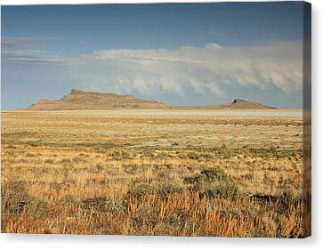 Great Basin Landscape Canvas Print by Johnny Adolphson