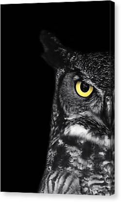 Great Horned Owl Photo Canvas Print by Stephanie McDowell