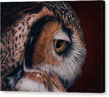 Great Horned Owl Portrait Canvas Print by Pat Erickson